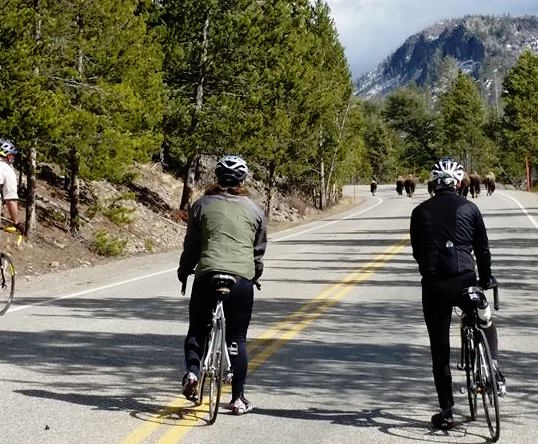 Group ride in West Yellowstone